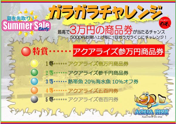 2012early-summerガラガラ本.jpg