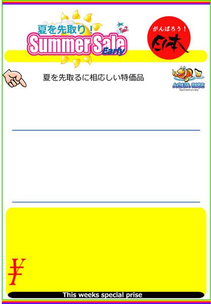 2012earlysummersaleA4CS本a.jpg