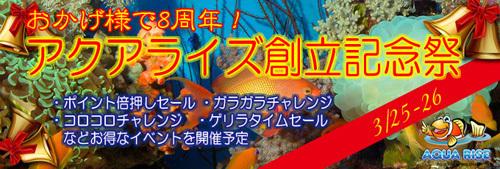 201703opensale_banner.jpg