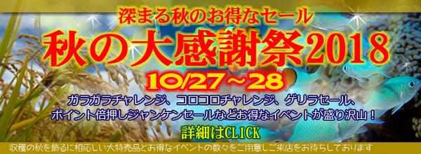 201810aki_banner.jpg