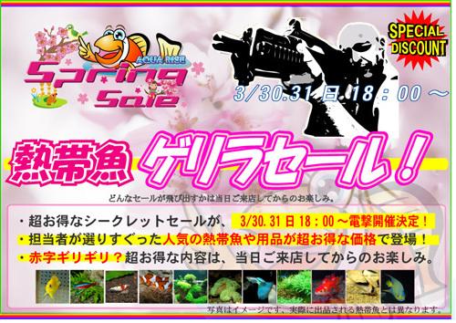 ゲリラ2013spring.jpg