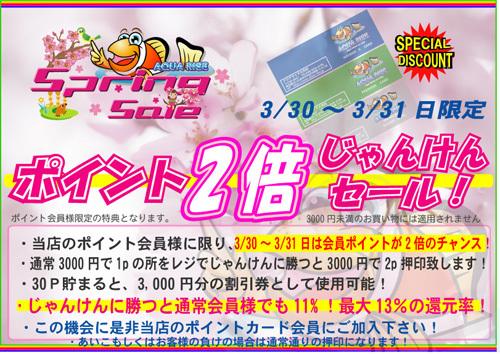 ポイント倍押し2013spring.jpg