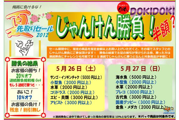 夏先取り2012.jpg