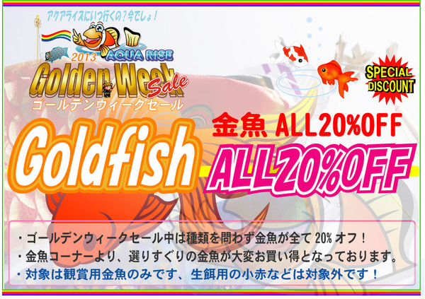 金魚20%オフ2013GW.jpg