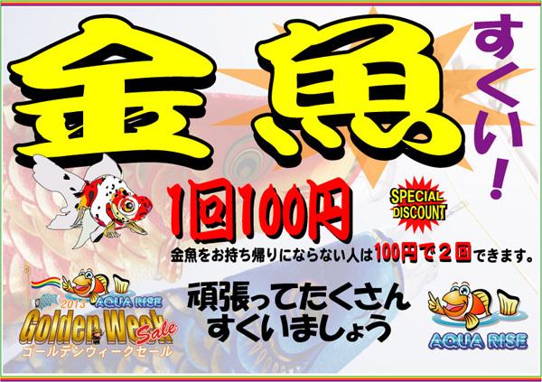 金魚すくい2013GW.jpg