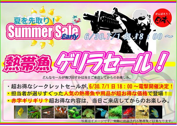 earlysummer2012ゲリラ本.jpg