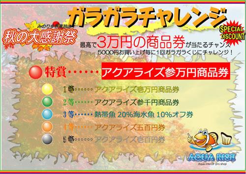 2017秋の大感謝祭ガラガラ本.jpg