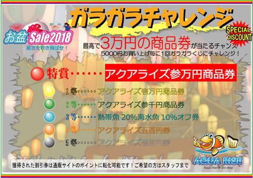 2018お盆ガラガラ本.jpg