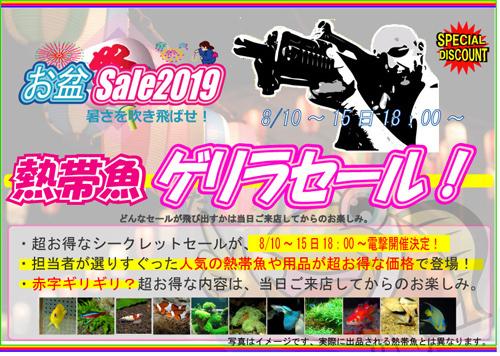 2019お盆ゲリラ.jpg