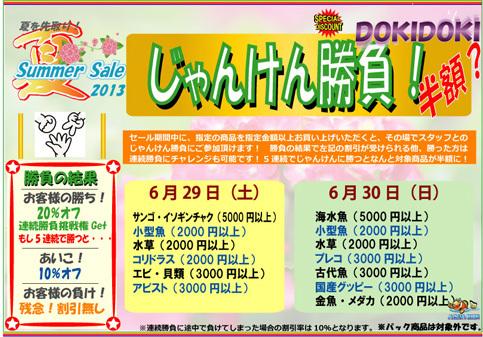 夏先取り2013ドキドキ.jpg