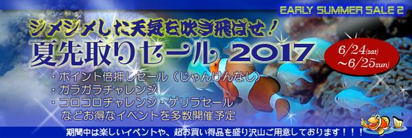 banner_earlysummer2.jpg