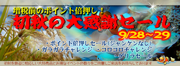 banner_shoshu.jpg