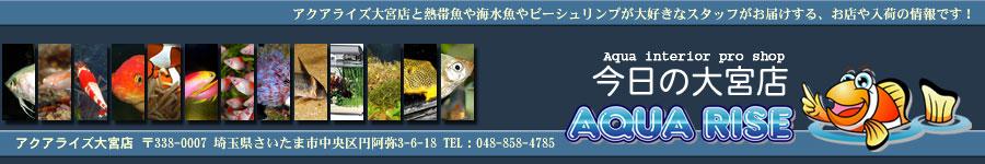 title_kyou900.jpg